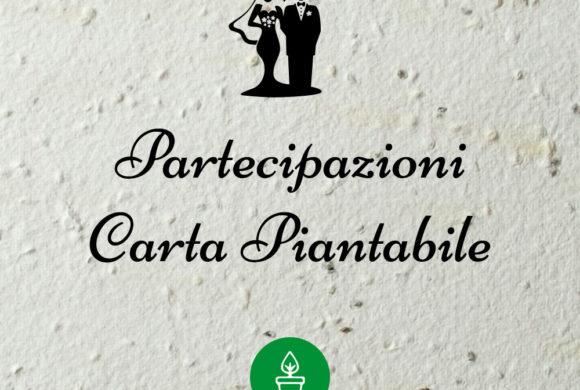 Partecipazioni carta piantabile